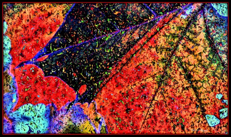 Hightly processed Photograph of a Fall Leaf