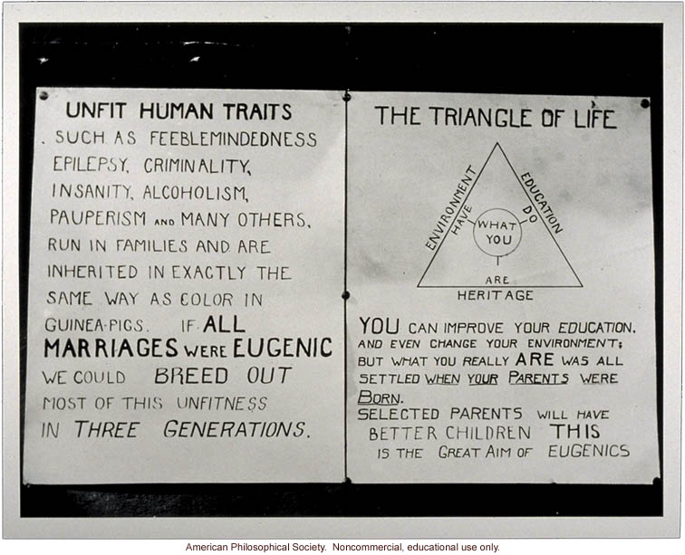 Unfit Human Traits and Triangle of Life
