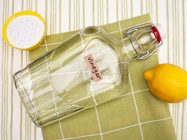 Life-Hack: Non-Toxic Drain Cleaner