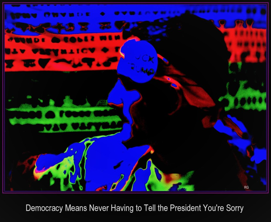 Democracy Means Never Having to Tell the President You're Sorry