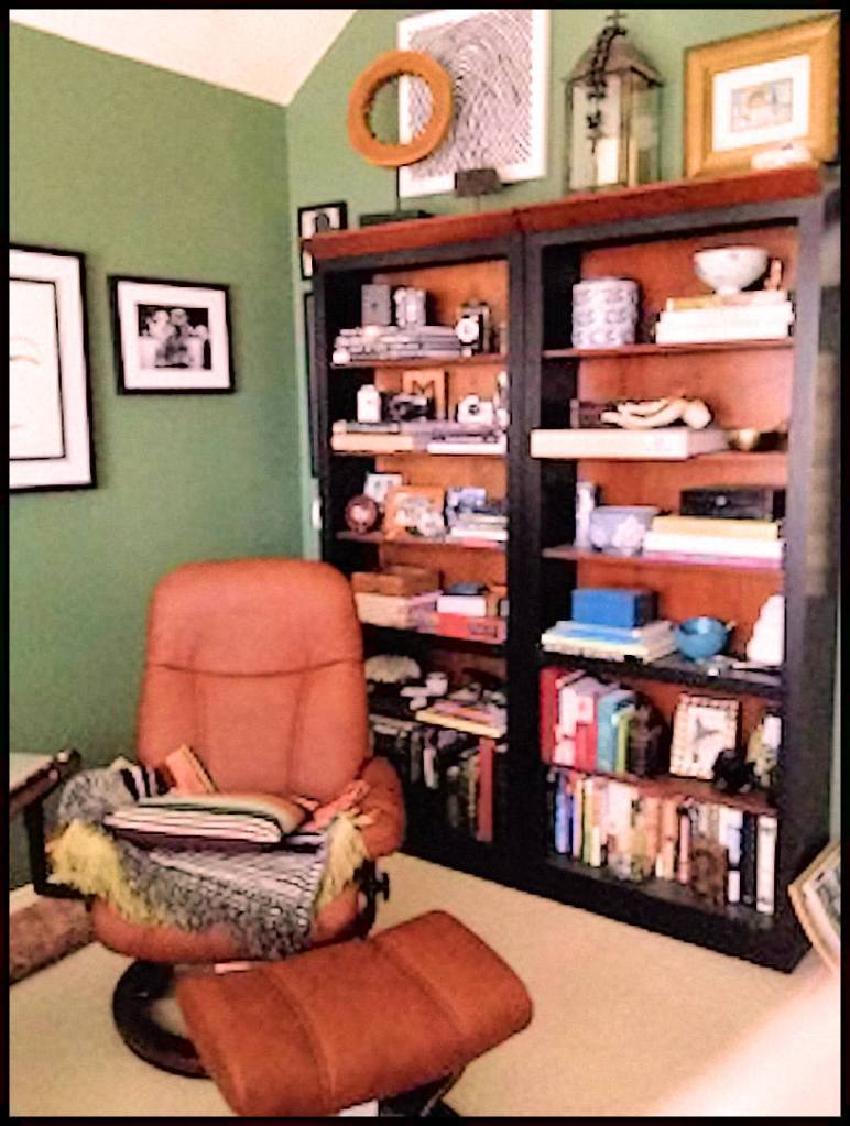 A Photograph of a lounger in front of full bookshelves