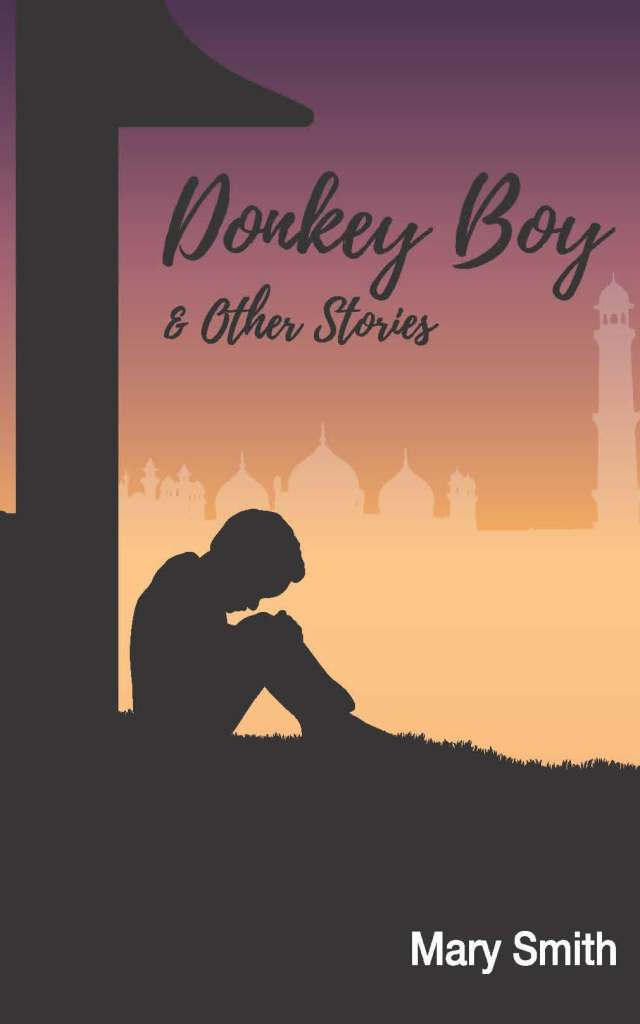 the cover of Donkey Boy and other stories