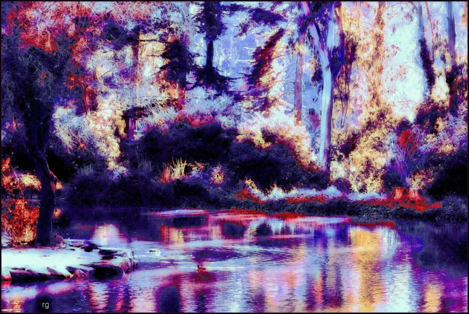 Heavily processed photograph taken at Golden Gate Park Park with a Canon Ti3