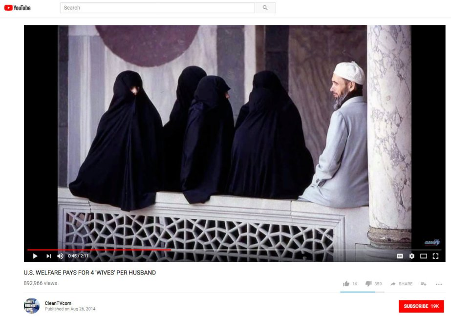 A Fake YouTube video that falsely claims the U.S. welfare system supports Muslim men who have four wives
