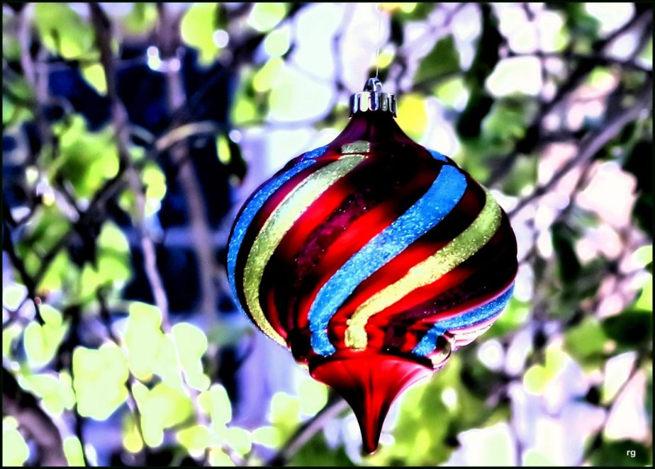 Photograph of a christmas ornament on a tree