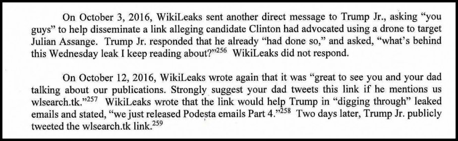 A section of the Mueller Report that describes Trump Junior's contacts with Wikileaks